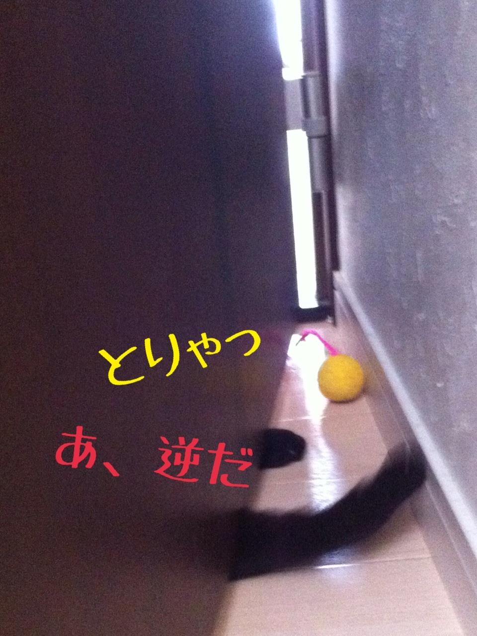 image_20130716230627.jpg