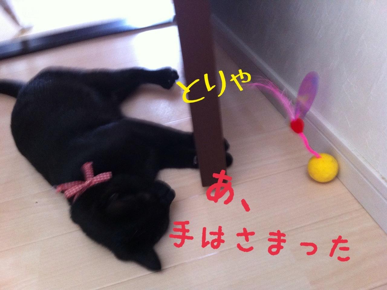 image_20130716230653.jpg