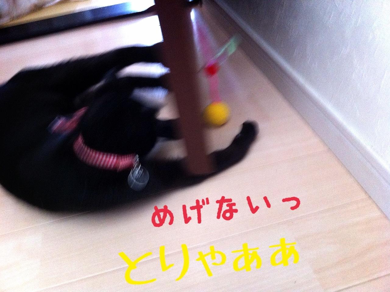 image_20130716230654.jpg