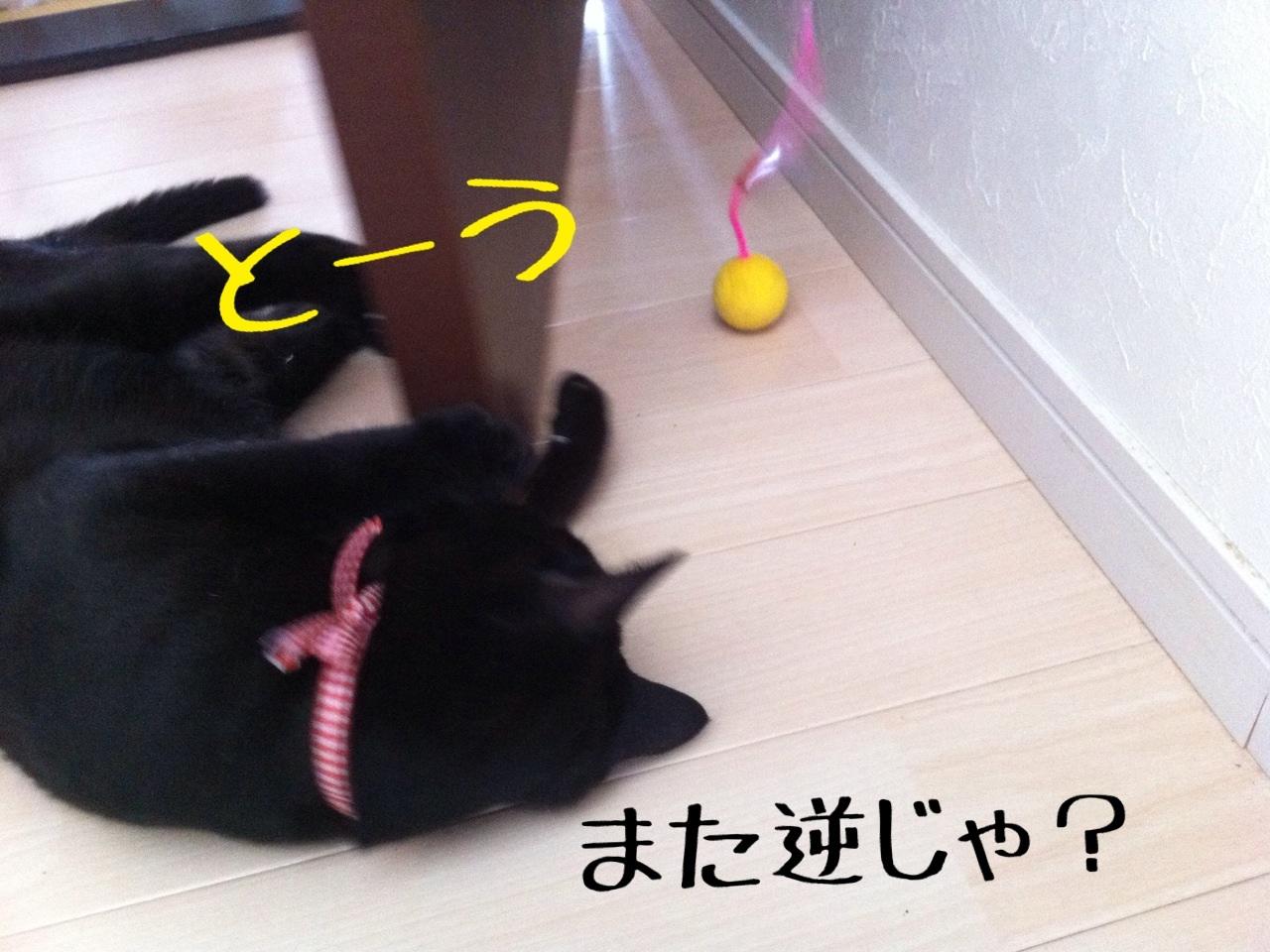 image_20130716230655.jpg