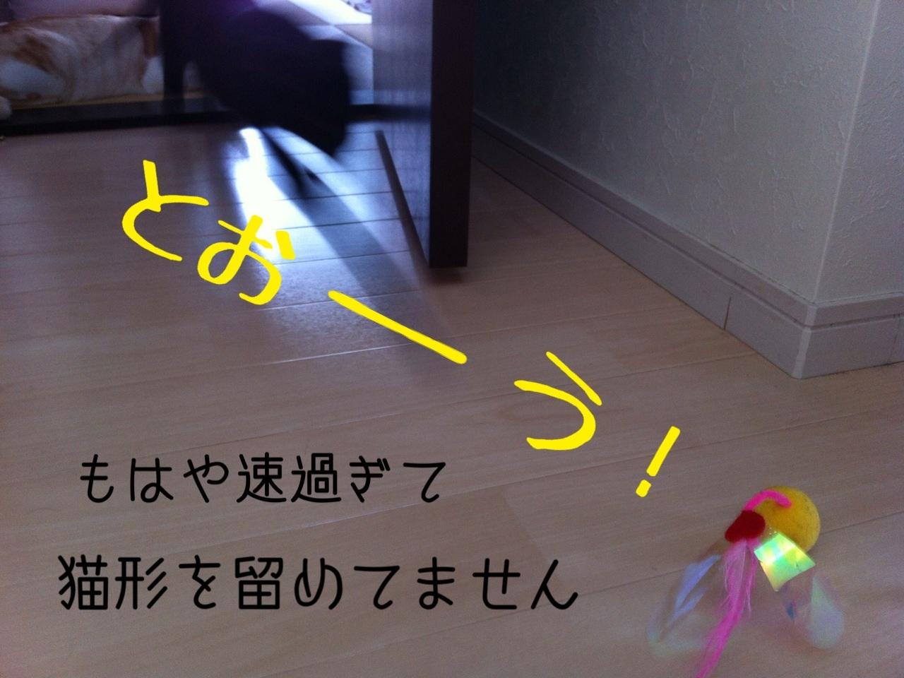 image_20130716230748.jpg