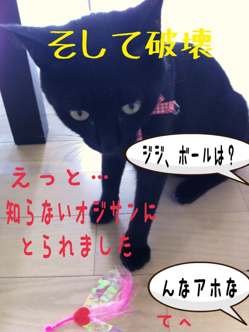 image_20130716230750.jpg