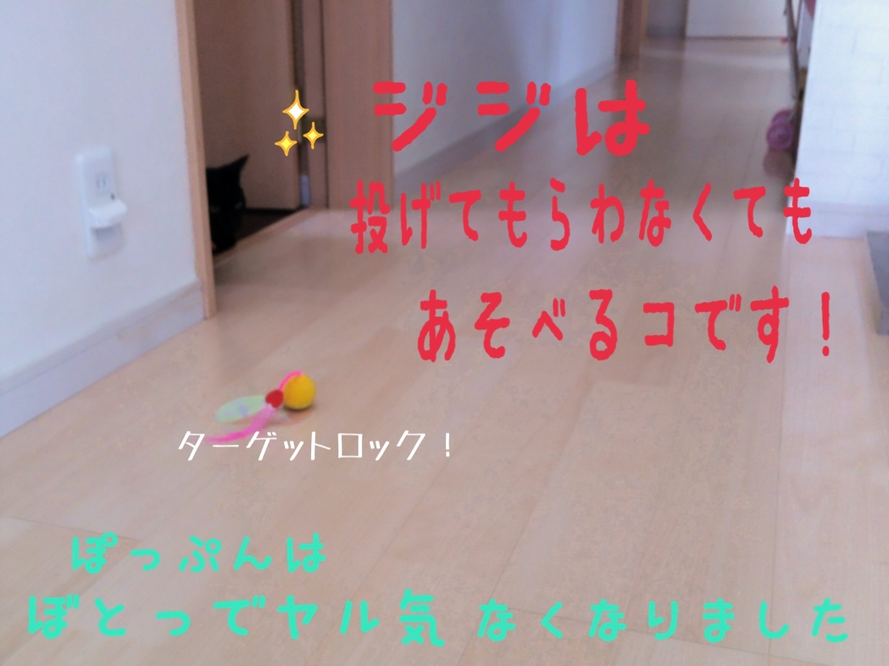 image_20130716232427.jpg
