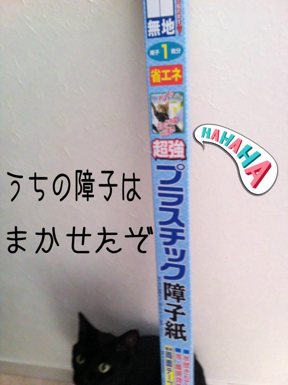 image_20130718193339.jpg