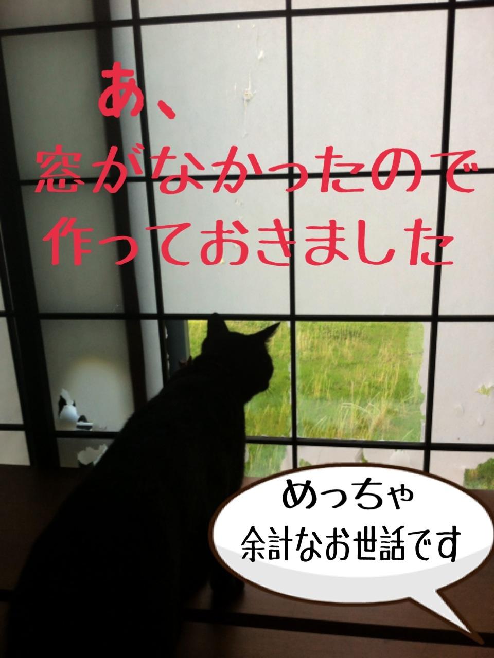 image_20130718193409.jpg