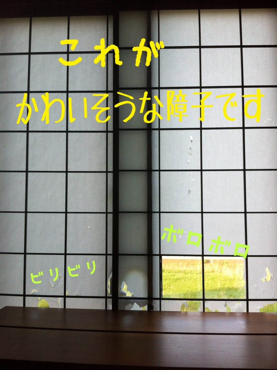 image_20130718193410.jpg