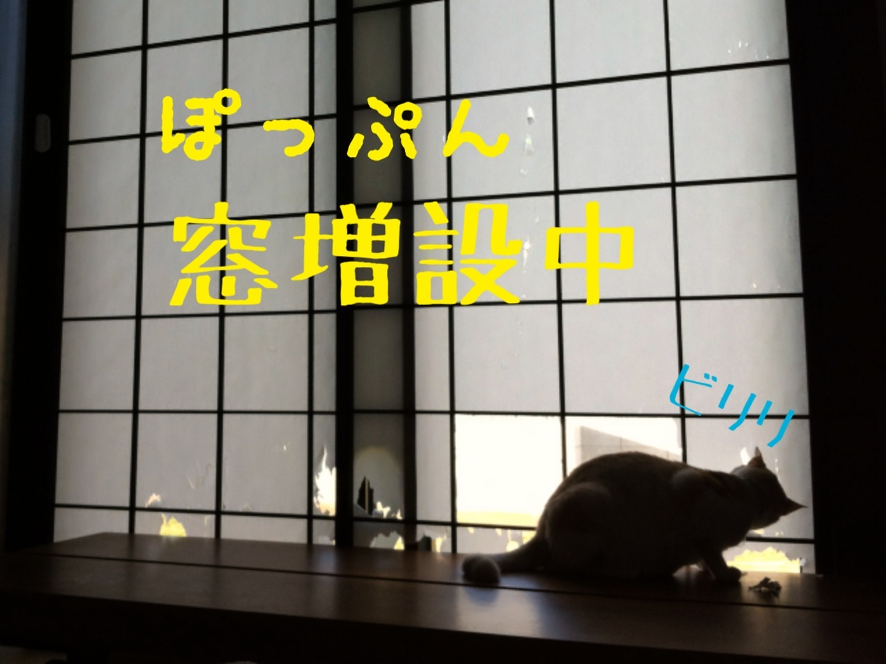 image_20130720091359.jpg