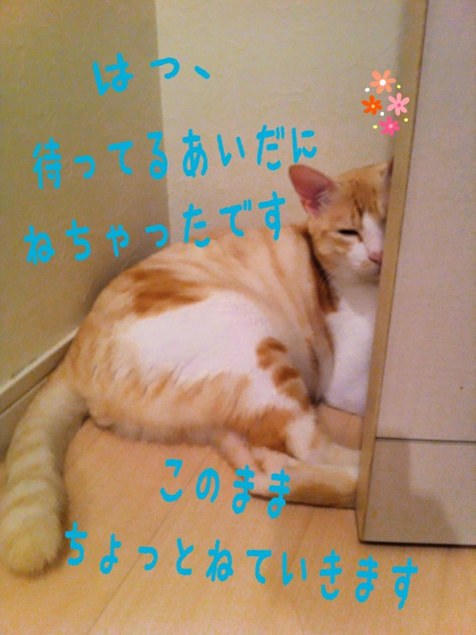 image_20130724234122.jpg