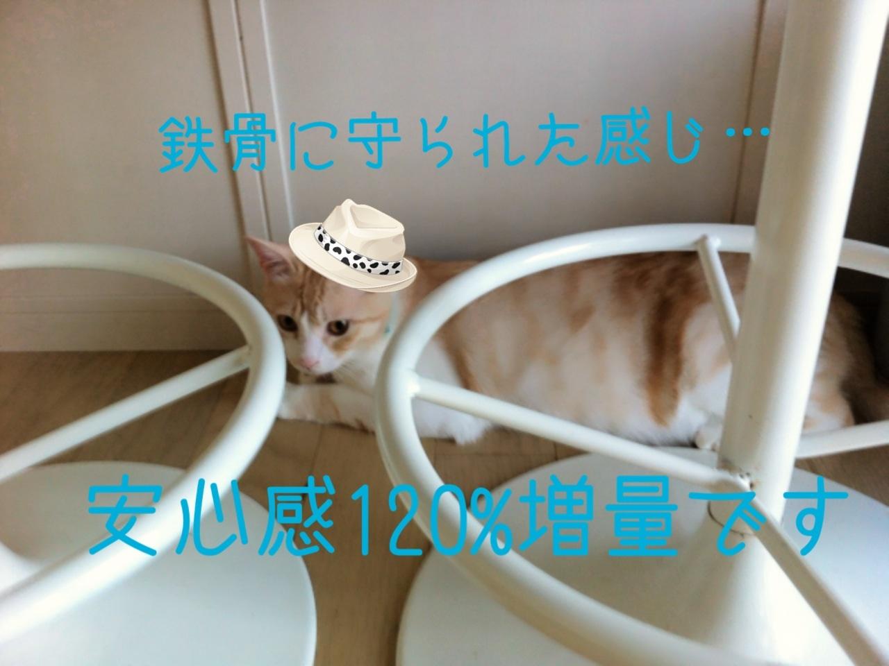 image_20130730205521858.jpg