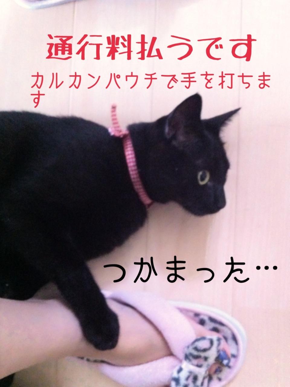 image_201308022348363f0.jpg