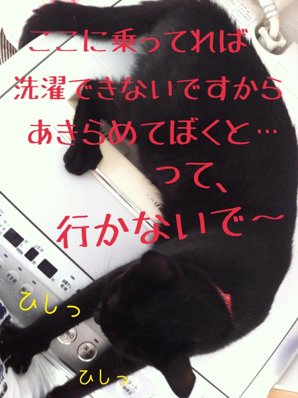 image_201308022348413ff.jpg