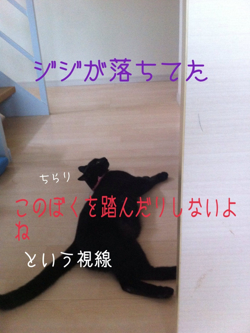 image_2013080223490232c.jpg