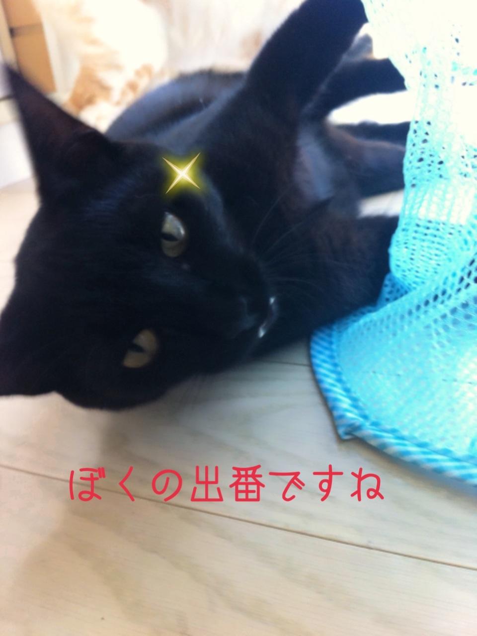 image_201308042013222ca.jpg