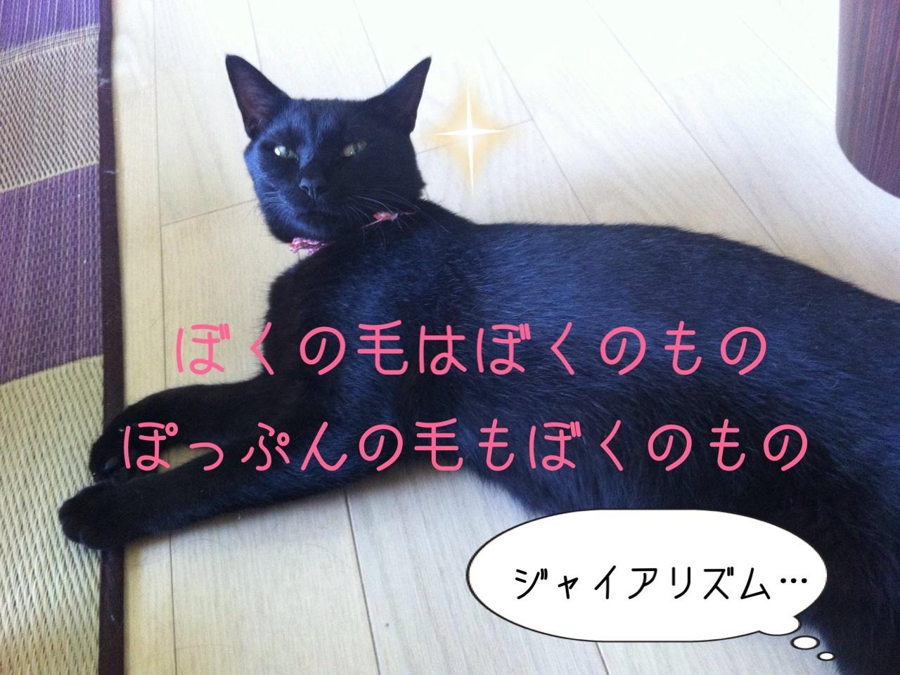image_201308092116056c3.jpg