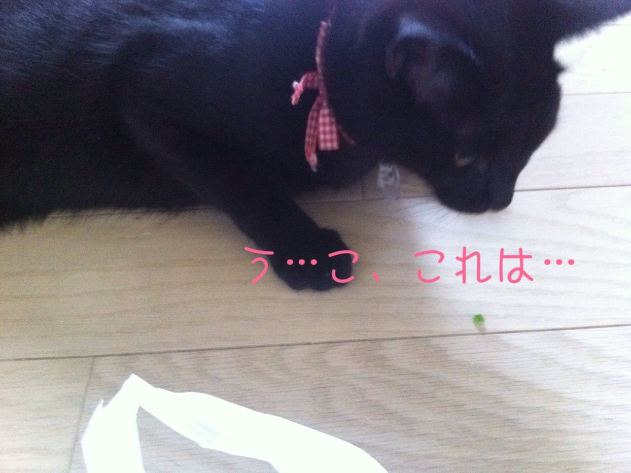 image_20130816225445b15.jpg