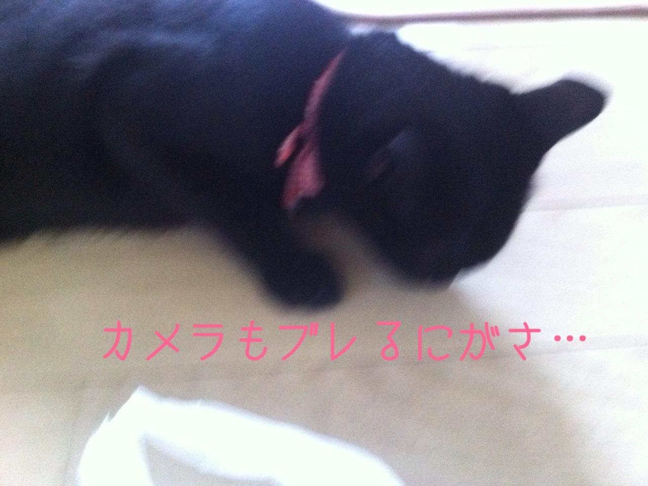 image_20130816225447e88.jpg
