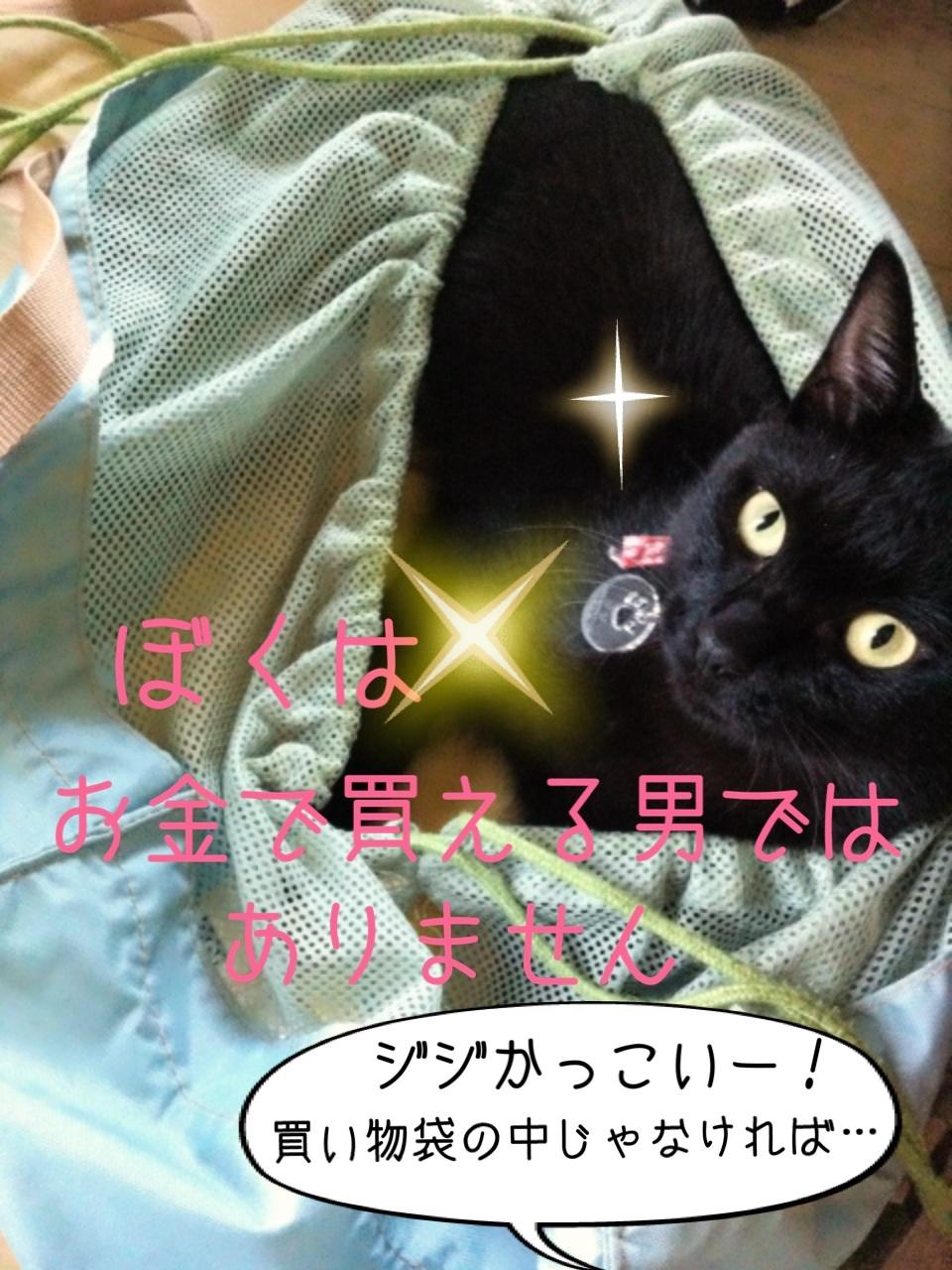 image_20130818194919edf.jpg