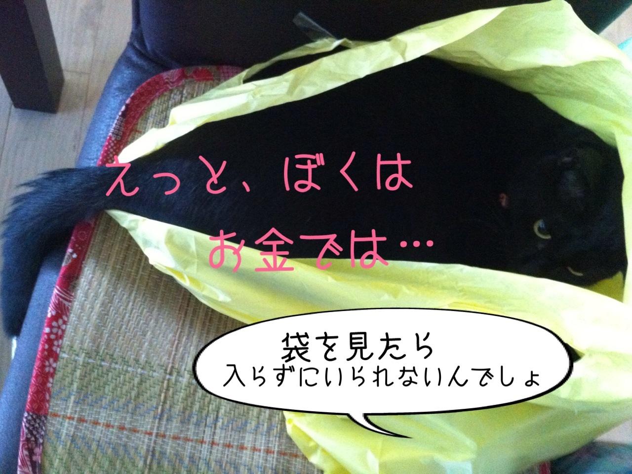 image_20130818194922f15.jpg