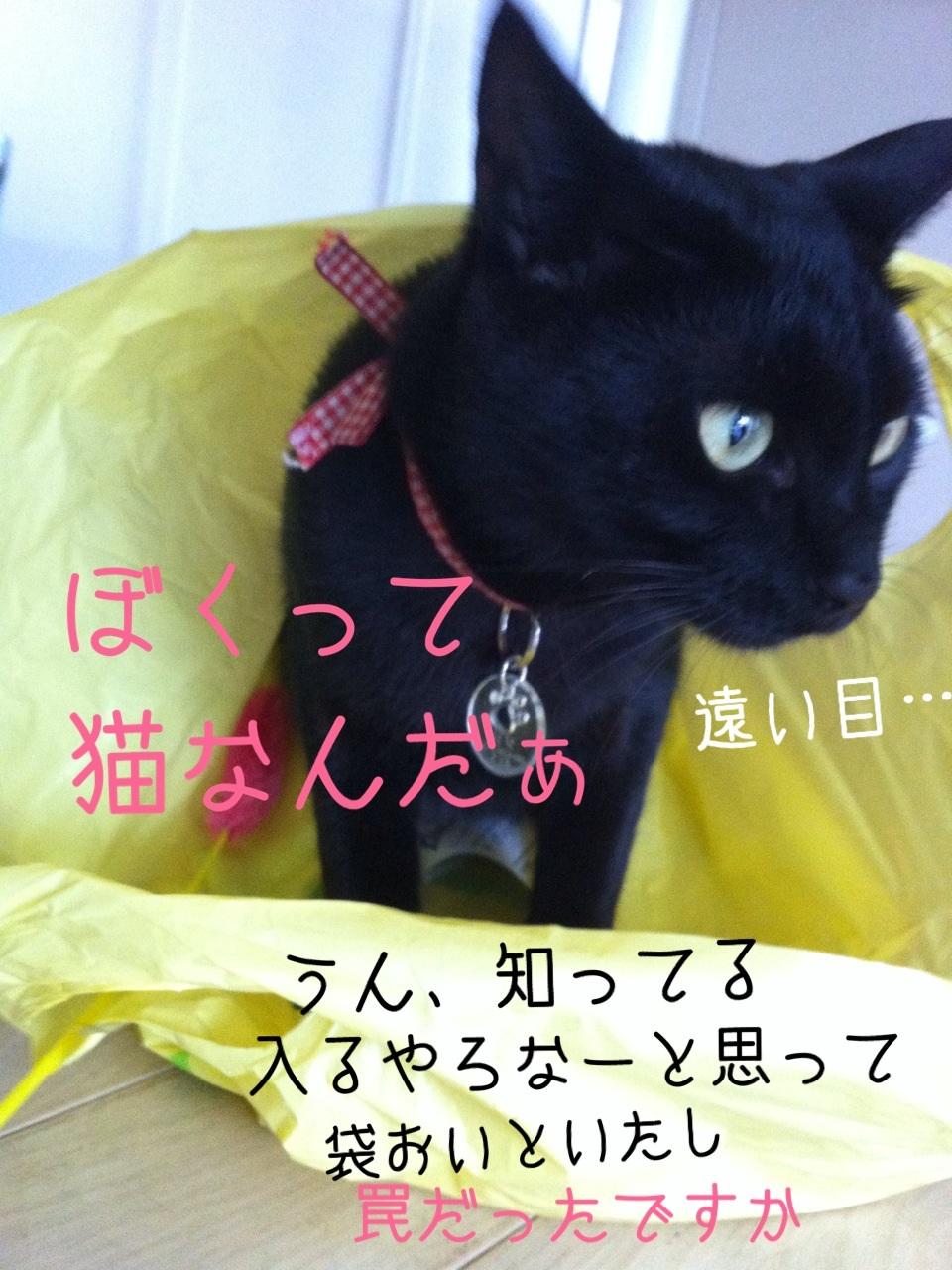 image_20130818195010ba1.jpg
