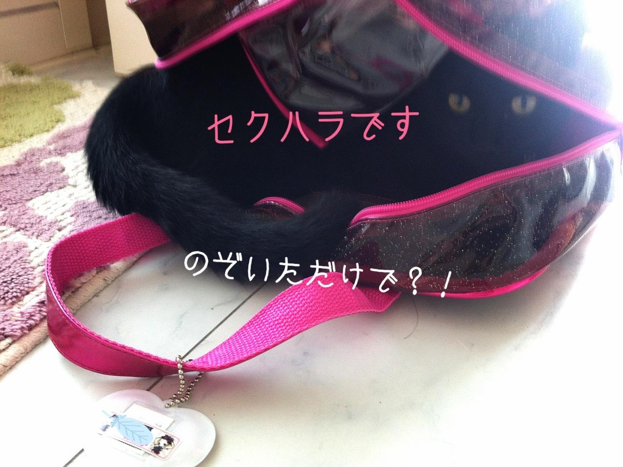 image_20130830210848f75.jpg