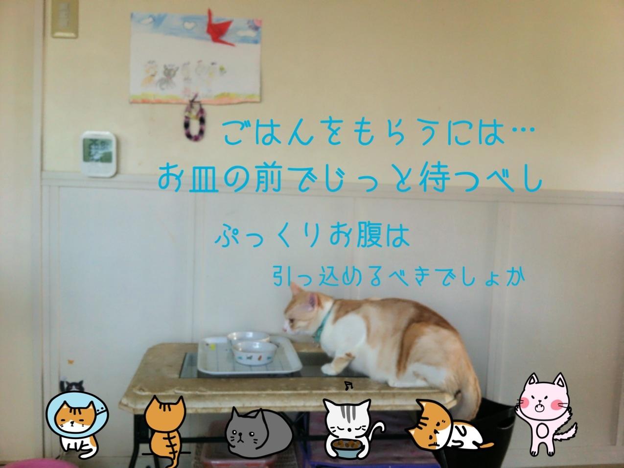 image_201309032212348ec.jpg