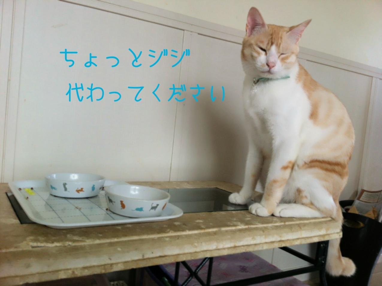 image_20130903221241953.jpg
