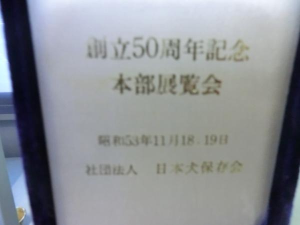 004_convert_20131108080215.jpg