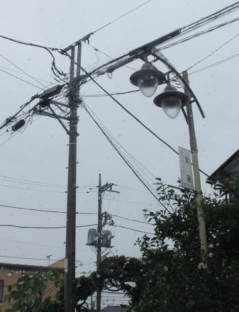 厚木 街灯