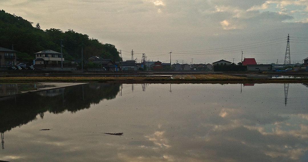 水田と由良山