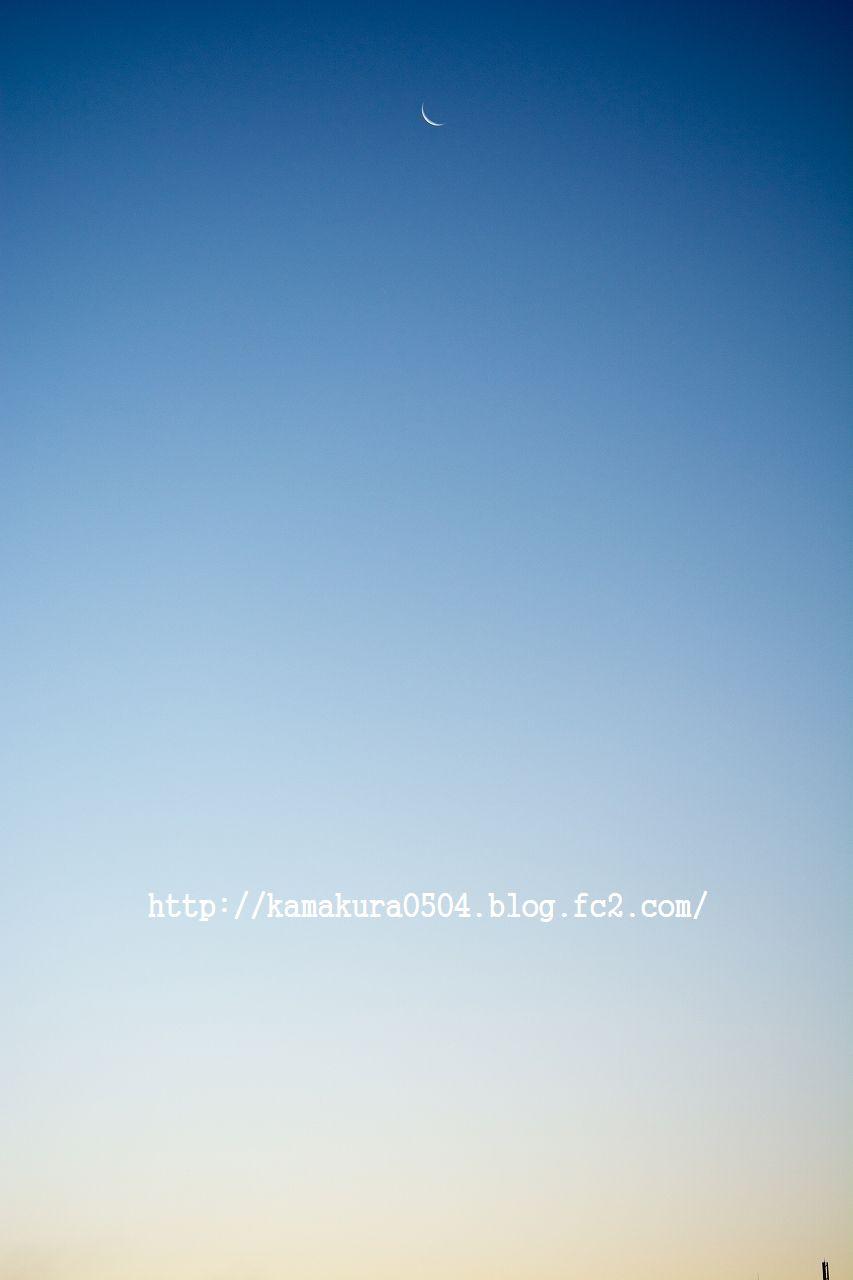 DSC_2025LR_blog.jpg