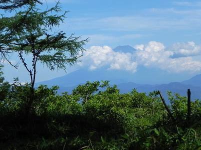 甘利富士山