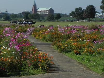 初秋の安比奈公園