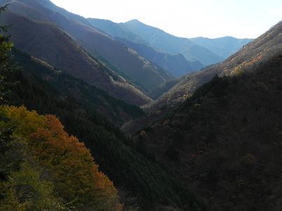 雲取林道から見た和名倉山方面