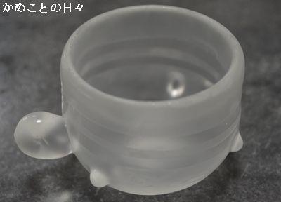 DSC_0749-g.jpg