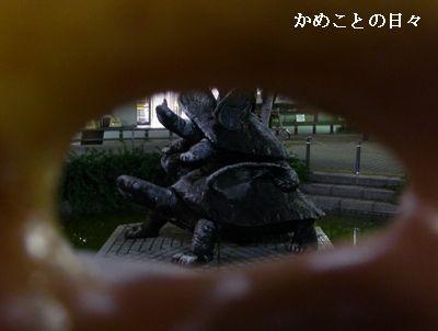 P1140982-d.jpg