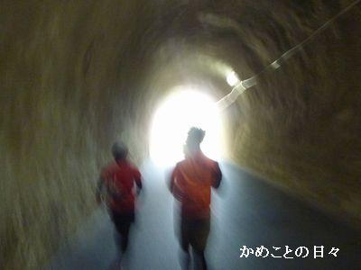 P1920475-tunnel.jpg