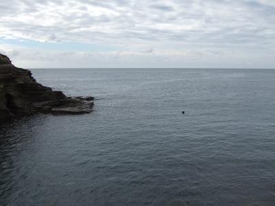 09-09 今日の海