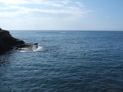 09-13 今日の海