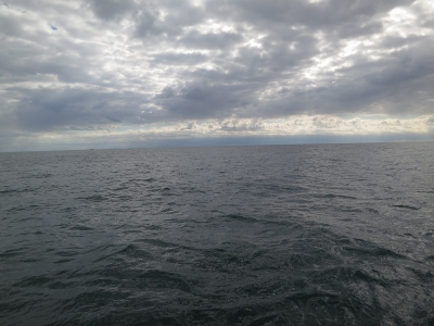 11-12 今日の海