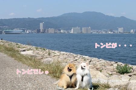 20140923-IMG_5499.jpg