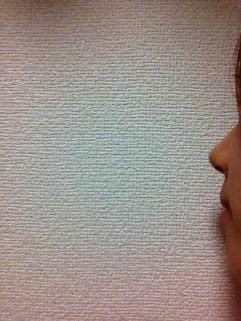 【GION】見よ。私の自慢の鼻。(アート調)