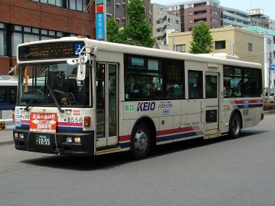 DSC00709-m.jpg