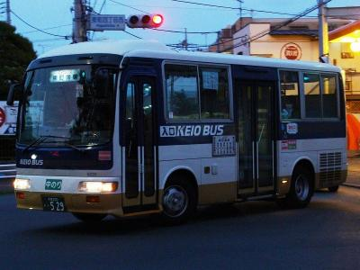 DSC00991-m.jpg