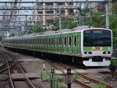 DSC01914.jpg