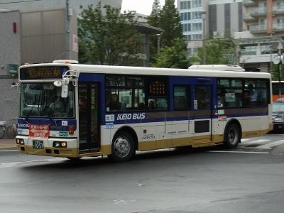 DSC02437-m.jpg