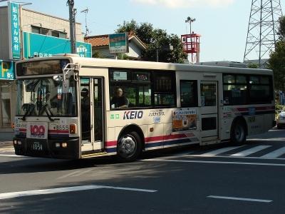 DSC02530-m.jpg