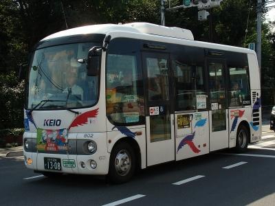 DSC02542.jpg