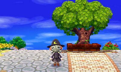 雨宿りの木