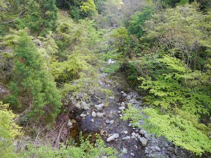 古座川ダム上の沢