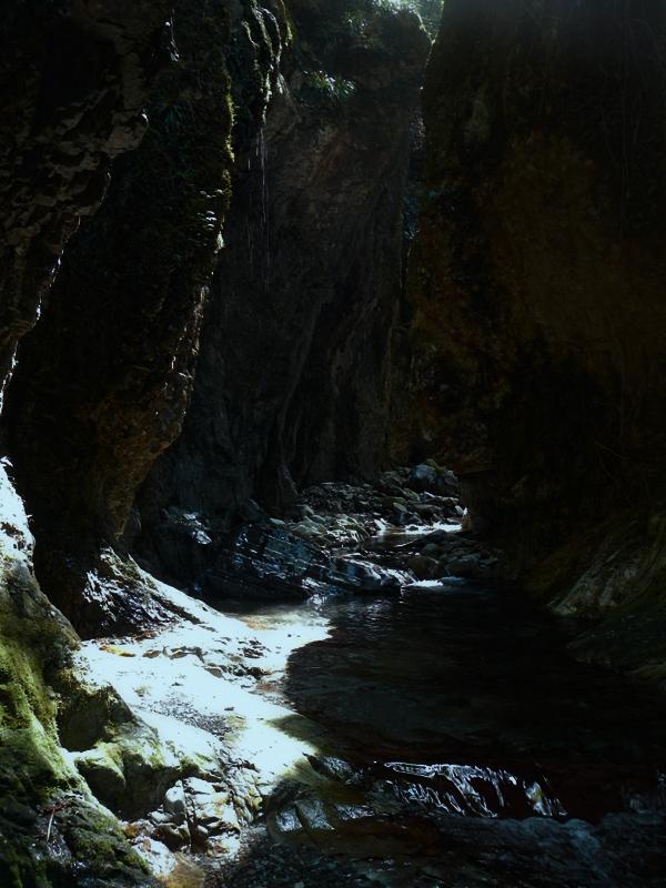 滝に続く道